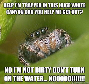Help I'm trapped in this huge white canyon can you help me get out? No I'm not dirty don't turn on the water... NOOOOO!!!!!!!  Misunderstood Spider