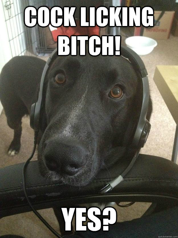 Cock licking bitch! YES? - Cock licking bitch! YES?  Gamer Dog