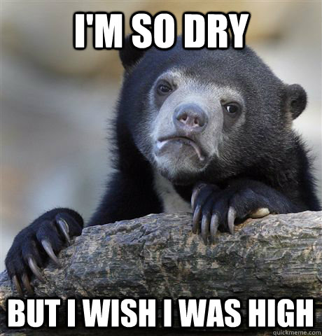 i'm so dry but i wish i was high - i'm so dry but i wish i was high  Confession Bear