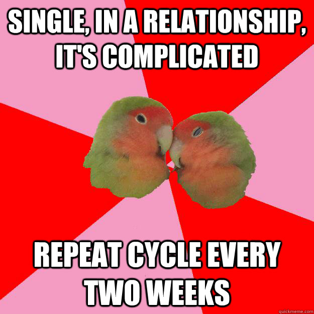 single, in a relationship, it's complicated repeat cycle every two weeks