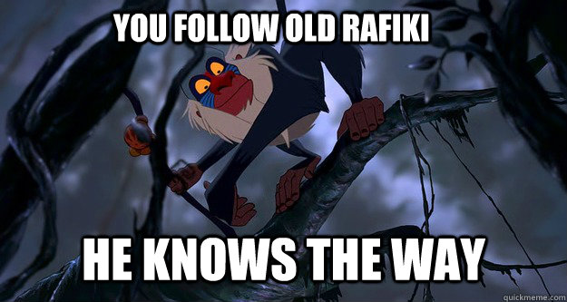 You follow old Rafiki he knows the way - You follow old Rafiki he knows the way  Rafiki