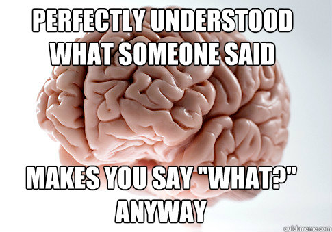 PERFECTLY UNDERSTOOD WHAT SOMEONE SAID MAKES YOU SAY