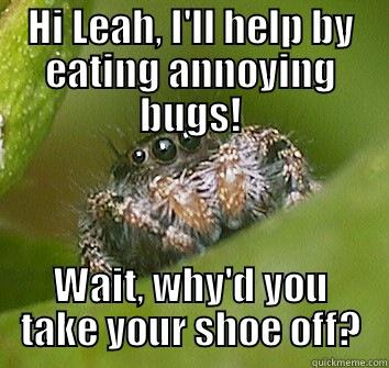 Spider for leah - HI LEAH, I'LL HELP BY EATING ANNOYING BUGS! WAIT, WHY'D YOU TAKE YOUR SHOE OFF? Misunderstood Spider
