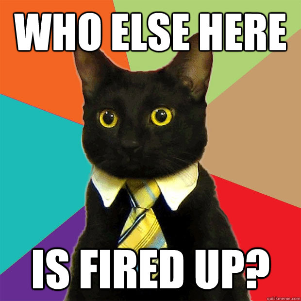 Who else here Is fired up? - Who else here Is fired up?  Business Cat
