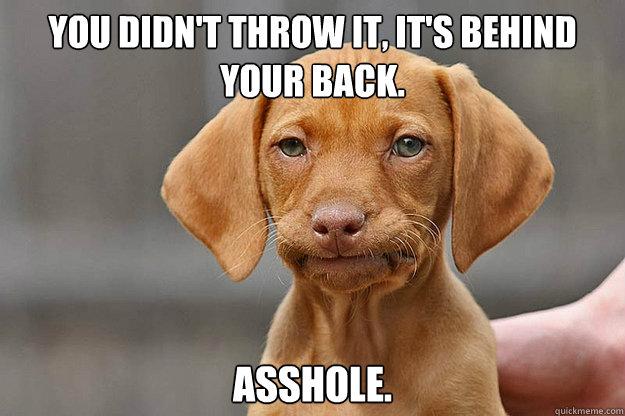 asshole  unamused puppy Unamused Puppy Meme