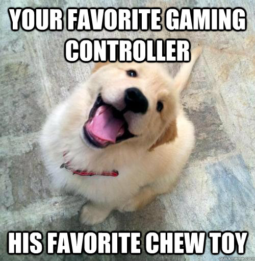 Your favorite gaming controller his favorite chew toy  Actual Puppy