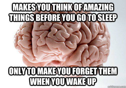 makes you think of amazing things before you go to sleep only to make you forget them when you wake up - makes you think of amazing things before you go to sleep only to make you forget them when you wake up  Scumbag Brain