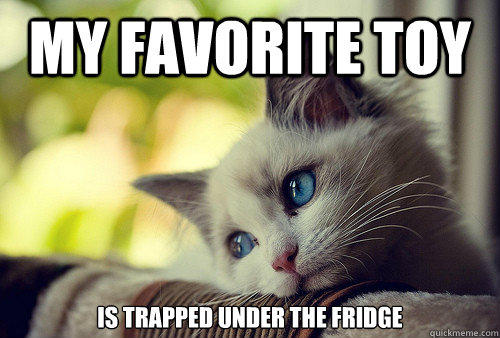 My favorite toy Is trapped under the fridge - My favorite toy Is trapped under the fridge  First World Problems Cat