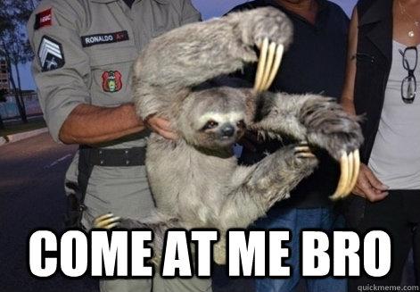 Come At me bro  Sloth