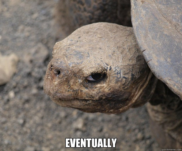 EVENTUALLY  Insanity Tortoise