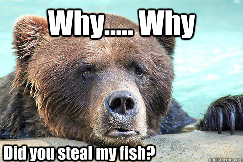 Why..... Why Did you steal my fish?  Sad Bear