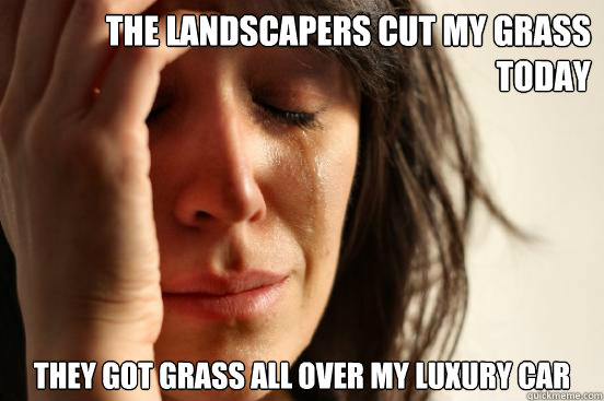 the landscapers cut my grass today they got grass all over my luxury car - the landscapers cut my grass today they got grass all over my luxury car  First World Problems