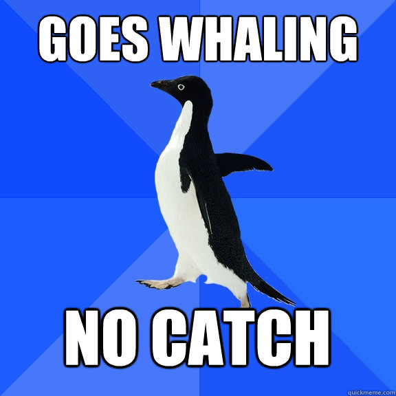 goes whaling no catch - goes whaling no catch  Socially Awkward Penguin