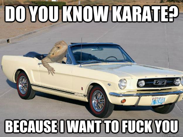 Do you know karate? because i want to fuck you