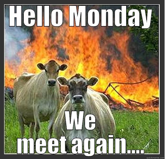 oh hello monday we meet