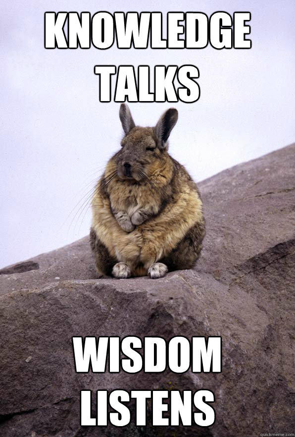 knowledge talks wisdom listens - knowledge talks wisdom listens  Wise Wondering Viscacha