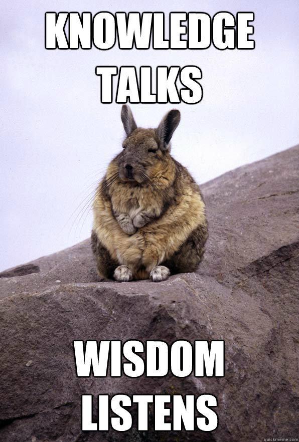 knowledge talks wisdom listens  Wise Wondering Viscacha