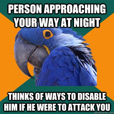 Person approaching your way at night thinks of ways to disable him if he were to attack you - Person approaching your way at night thinks of ways to disable him if he were to attack you  Paranoid Parrot