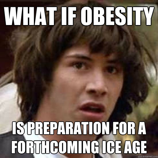 What if Obesity Is preparation for a forthcoming Ice Age - What if Obesity Is preparation for a forthcoming Ice Age  Obesity Epidemic I think Obesity Solution