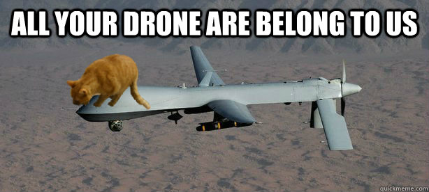 All Your Drone Are Belong To Us
