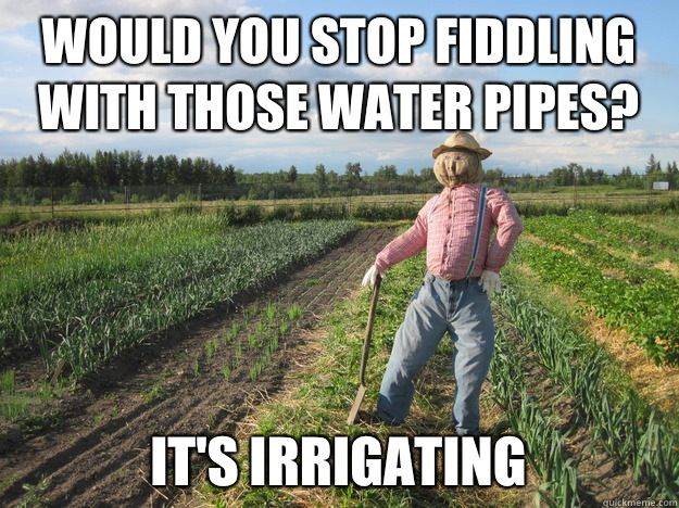 Would you stop fiddling with those water pipes? It's irrigating