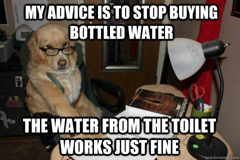 My advice is to stop buying bottled water The water from the toilet works just fine - My advice is to stop buying bottled water The water from the toilet works just fine  Financial Advice Dog