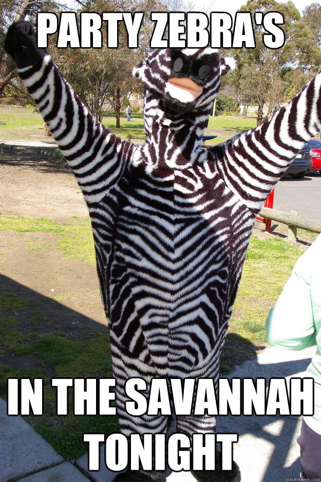 Party Zebra's in the savannah tonight