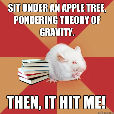 Sit under an apple tree, pondering theory of gravity. Then, it hit me! - Sit under an apple tree, pondering theory of gravity. Then, it hit me!  Science Major Mouse