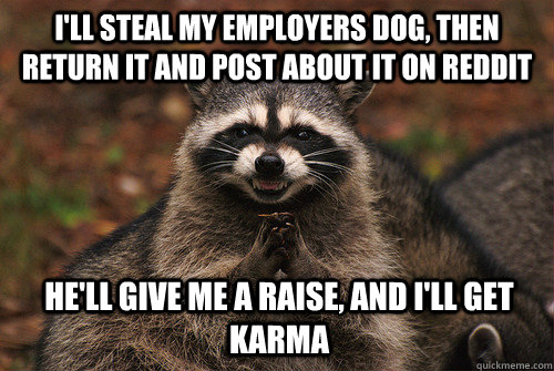 I'll steal my employers dog, then return it and post about it on reddit he'll give me a raise, and I'll get karma - I'll steal my employers dog, then return it and post about it on reddit he'll give me a raise, and I'll get karma  Insidious Racoon 2