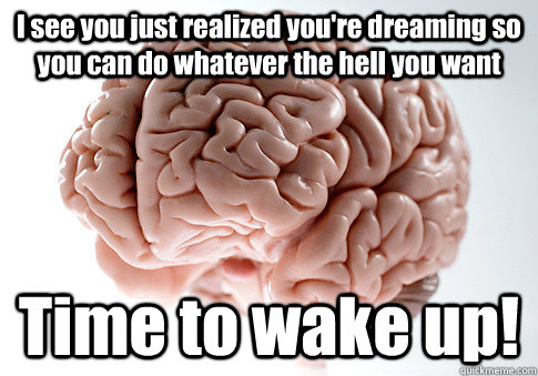 I see you just realized you're dreaming so you can do whatever the hell you want Time to wake up! - I see you just realized you're dreaming so you can do whatever the hell you want Time to wake up!  Scumbag Brain