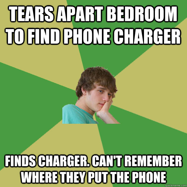 Tears apart bedroom to find phone charger Finds charger. Can't remember where they put the phone