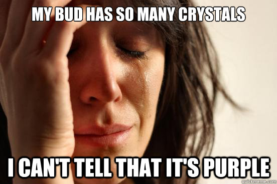 My bud has so many crystals I can't tell that it's purple - My bud has so many crystals I can't tell that it's purple  First World Problems