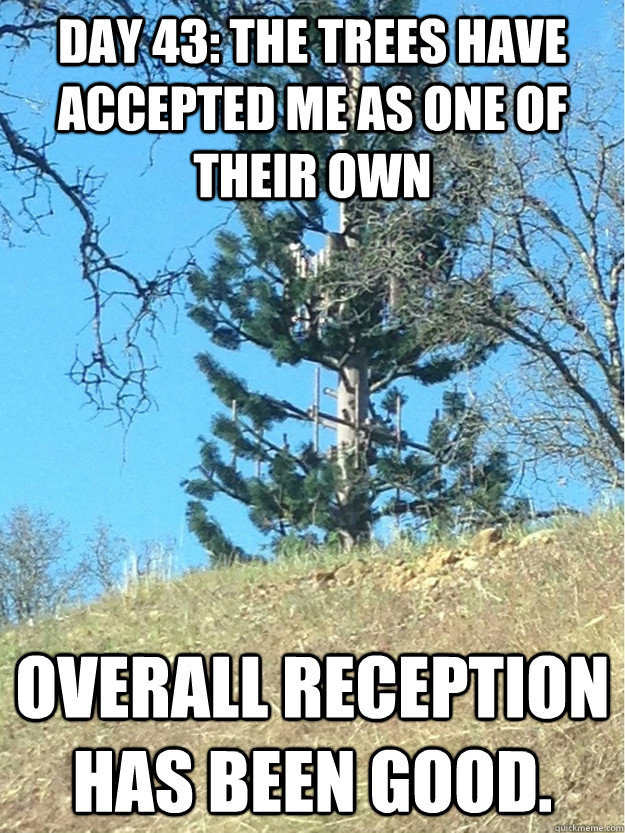 Day 43: The trees have accepted me as one of their own Overall reception has been good. - Day 43: The trees have accepted me as one of their own Overall reception has been good.  Misc