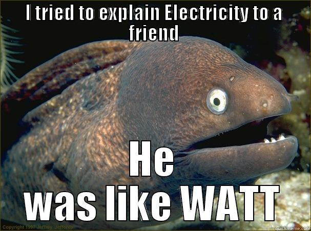 I TRIED TO EXPLAIN ELECTRICITY TO A FRIEND HE WAS LIKE WATT Bad Joke Eel