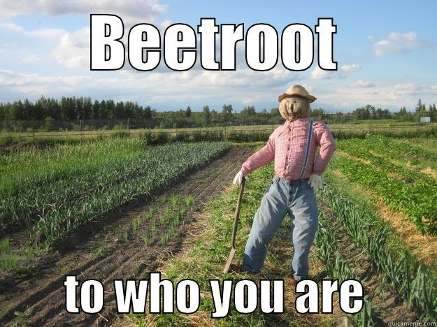 BEETROOT         TO WHO YOU ARE        Scarecrow