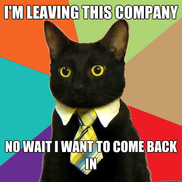 I'm leaving this company no wait I want to come back in - I'm leaving this company no wait I want to come back in  Business Cat