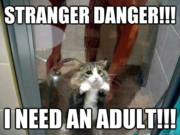 stranger danger!!! I need an adult!!!  Shower kitty
