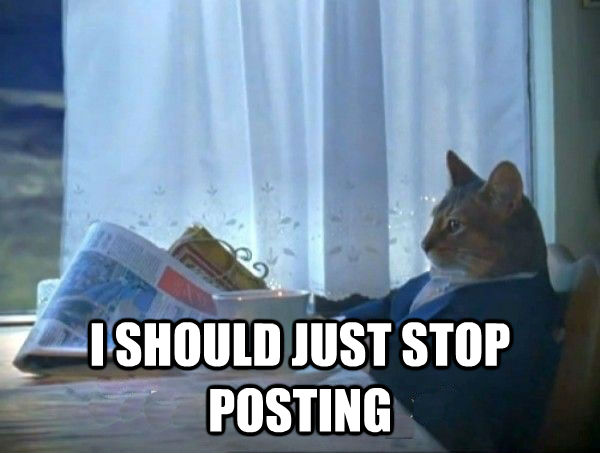 I SHOULD JUST STOP POSTING -  I SHOULD JUST STOP POSTING  morning realization newspaper cat meme