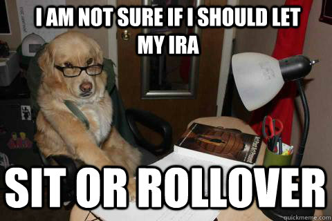 I am not sure if I should let my IRA sit or rollover - I am not sure if I should let my IRA sit or rollover  Financial Advice Dog