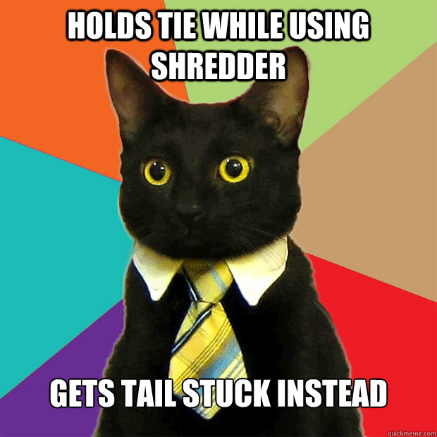 holds tie while using shredder gets tail stuck instead - holds tie while using shredder gets tail stuck instead  Business Cat