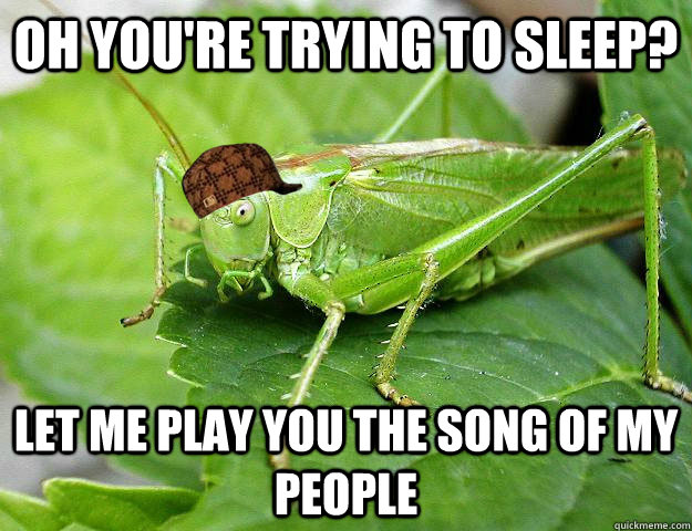 Oh you're trying to sleep? let me play you the song of my people