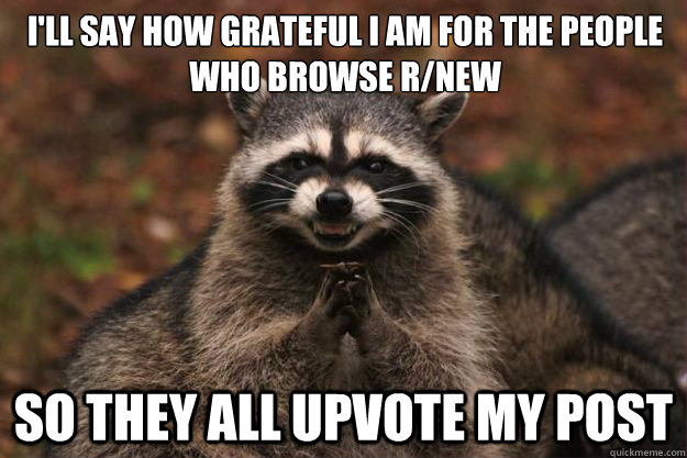 I'll say how grateful I am for the people who browse r/new So they all upvote my post  Evil Plotting Raccoon