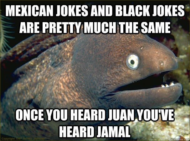 mexican jokes and black jokes are pretty much the same once you heard juan you've heard jamal - mexican jokes and black jokes are pretty much the same once you heard juan you've heard jamal  Bad Joke Eel