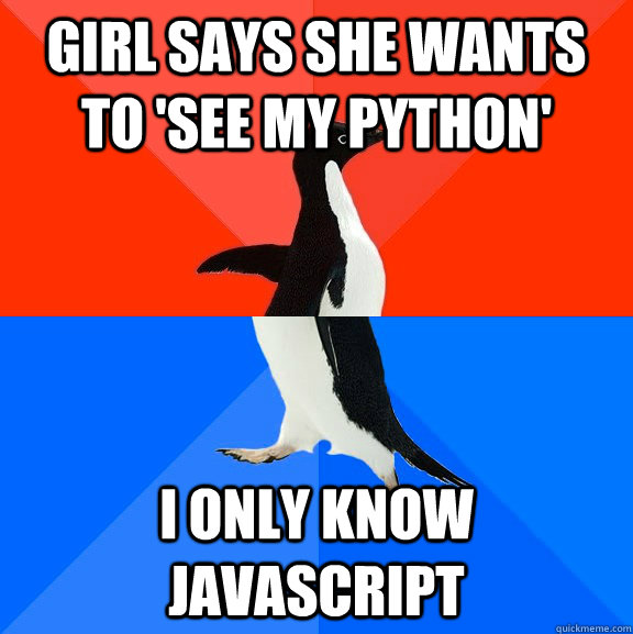 Girl says she wants to 'see my python' I only know javascript - Girl says she wants to 'see my python' I only know javascript  Socially Awesome Awkward Penguin