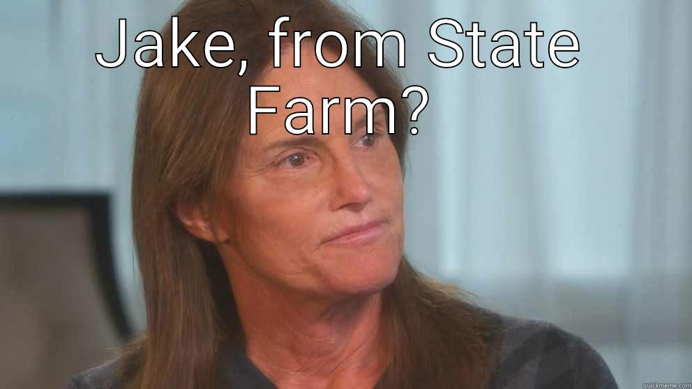 jake state farm - JAKE, FROM STATE FARM?  Misc