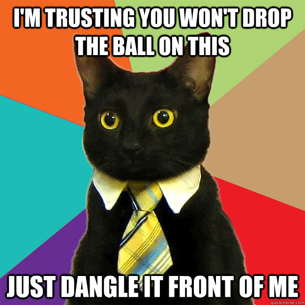 I'm trusting you won't drop the ball on this Just dangle it front of me - I'm trusting you won't drop the ball on this Just dangle it front of me  Business Cat
