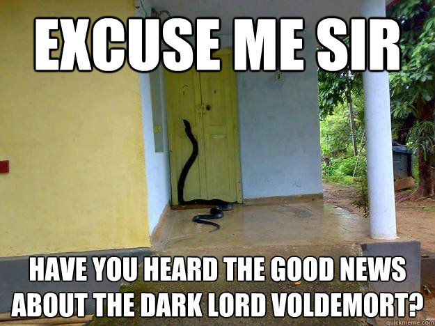 Excuse me sir Have you heard the good news about the dark lord Voldemort?