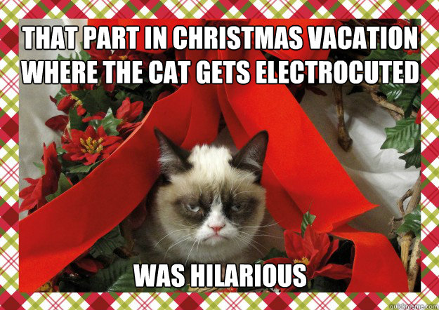 that part in christmas vacation where the cat gets electrocuted was hilarious