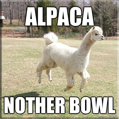 Alpaca Nother Bowl