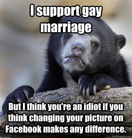 I support gay marriage But I think you're an idiot if you think changing your picture on Facebook makes any difference. - I support gay marriage But I think you're an idiot if you think changing your picture on Facebook makes any difference.  Confession Bear